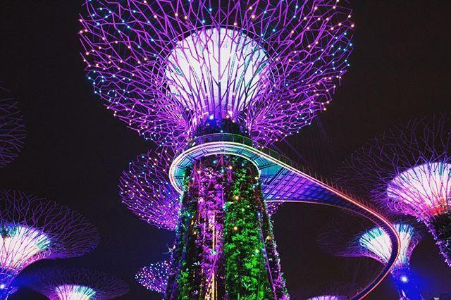 Marina Bay Gardens Light Show Time