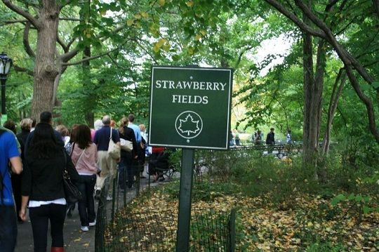 5 free things to do and see in central park http for Things to do at central park