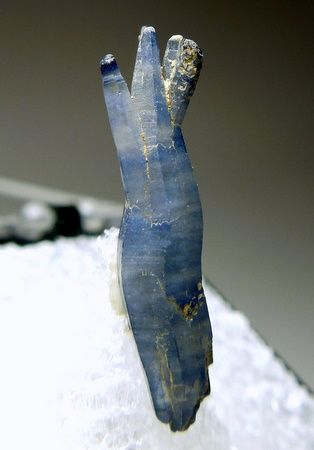 A strange shaped crystal of blue Sapphire. It starts as one and opens up in several others at one end.