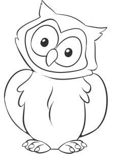 how to draw a owl step 6 | Owl coloring pages, Easy ...