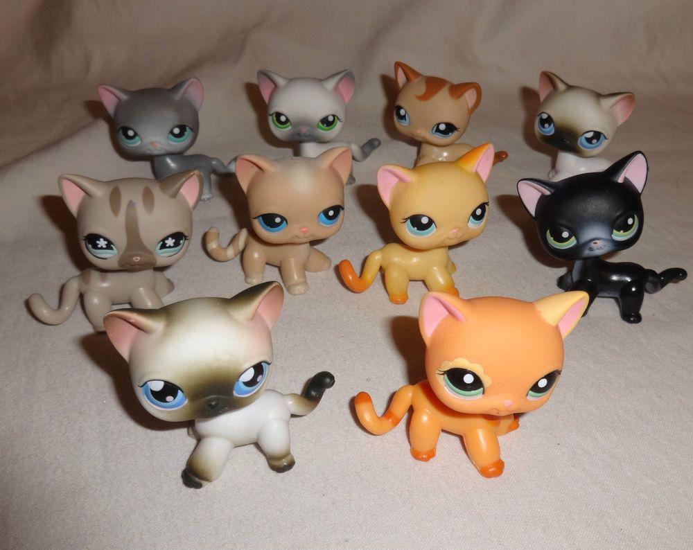 Lps Littlest Pet Shop Cat Siamese Short Hair Lot Of 10 Rare Htf 2004 Lps Littlest Pet Shop Lps Pets Lps Toys