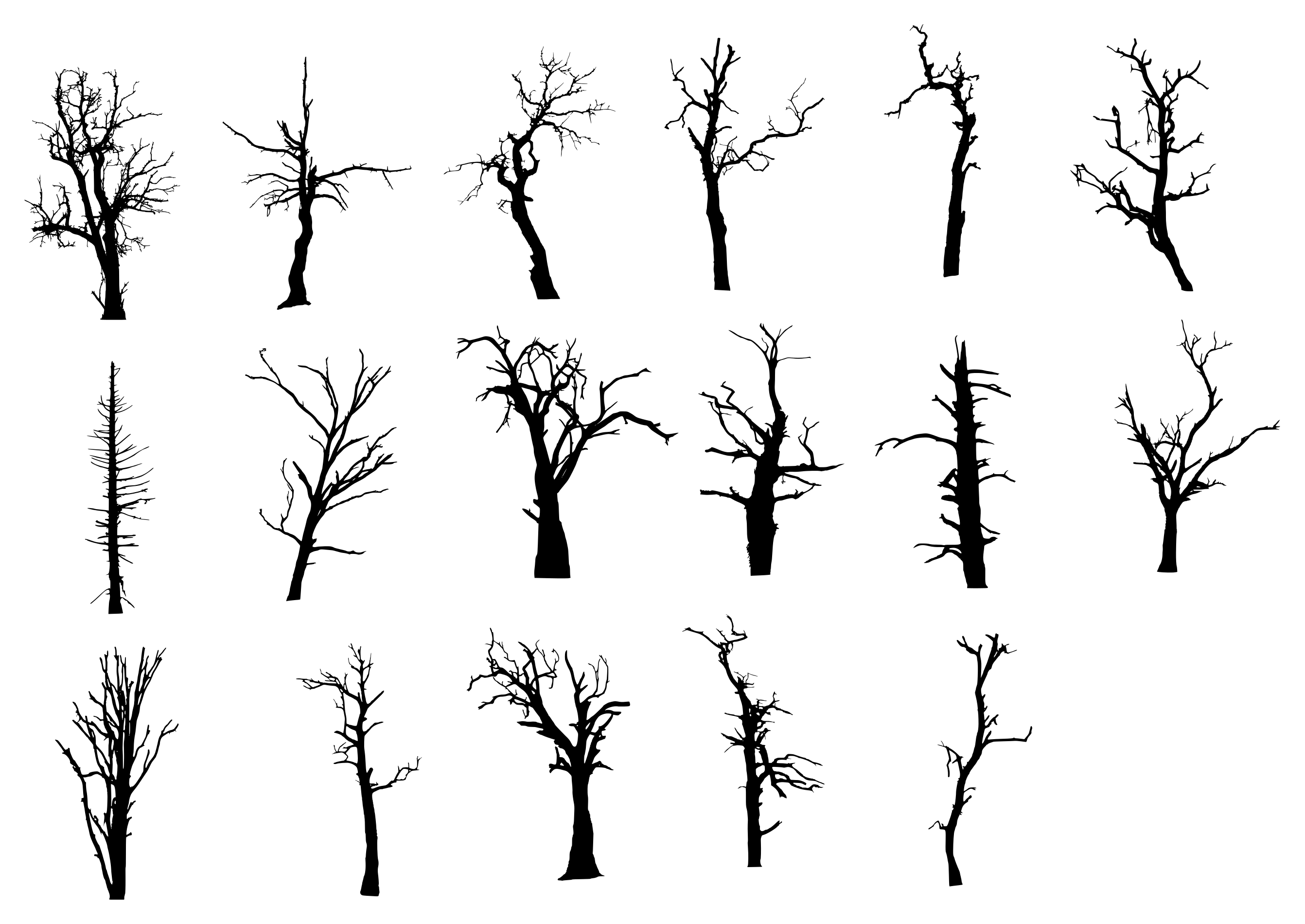 17 Dead Tree Silhouette Png Transparent Onlygfx Com Pine Tree Drawing Tree Silhouette Pine Tree Art