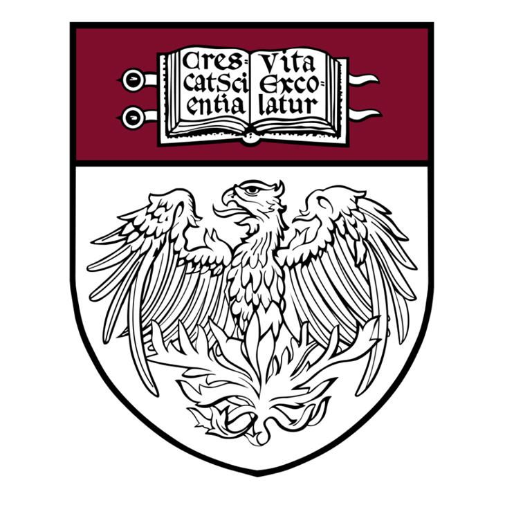 university of chicago prompts