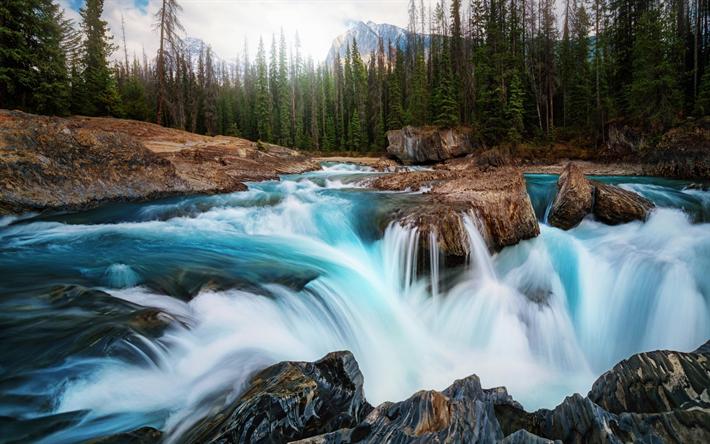 Lataa kuva Vuori joen, metsä, kivet, vettä, vuoret, Kanada