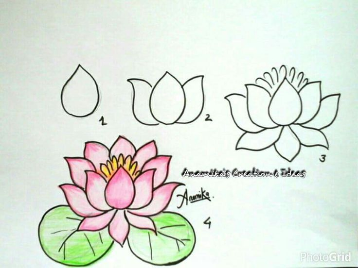 Explore Easy To Draw Flowers Drawing And More