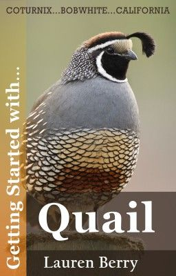 Getting Started with… Quail. Book Cover.