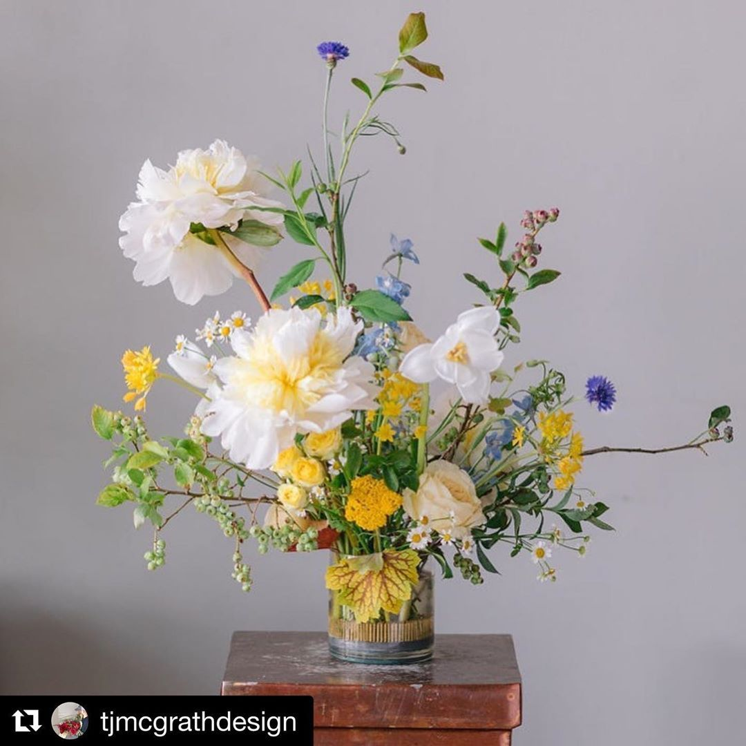 Floral Genius On Instagram 3 Round Pin Holder Accompanied By Summer Design Share Tjmcgrathdesign With That It S Floral Design Floral Centerpieces