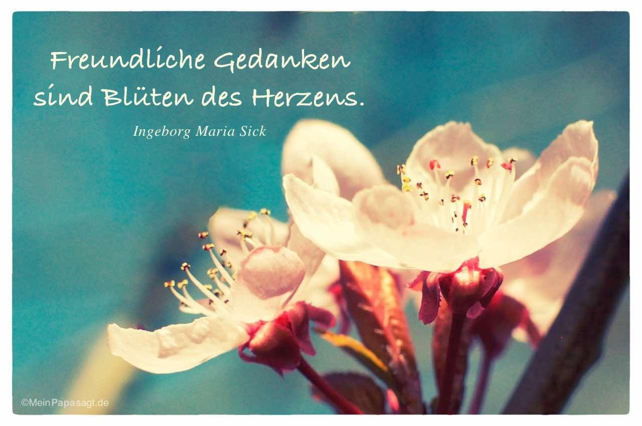 Mein Papa sagt...   Freundliche Gedanken sind Blüten des Herzens.  Ingeborg Maria Sick    Weisheiten und Zitate TÄGLICH NEU auf www.MeinPapasagt.de