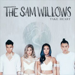Free Download New Mp3 Album The Sam Willows Take Heart 2015