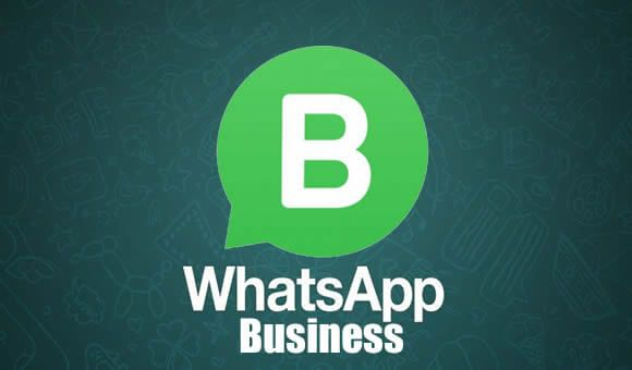 What are the benefits of the WhatsApp business app for
