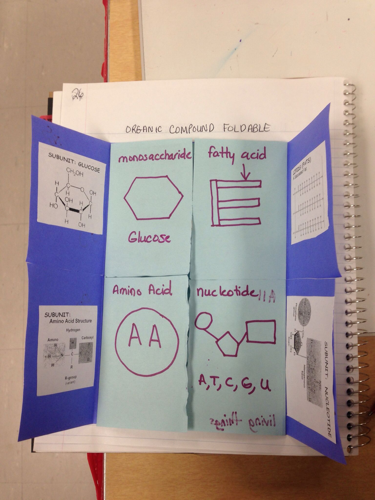Organic Compounds Foldable My Biology Class Pinterest Introduction To 7400 Series Digital Logic Devices Fizix