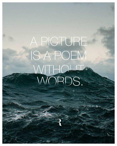 """""""Fotografia é um poema sem palavras.""""  www.allinynunes.com"""
