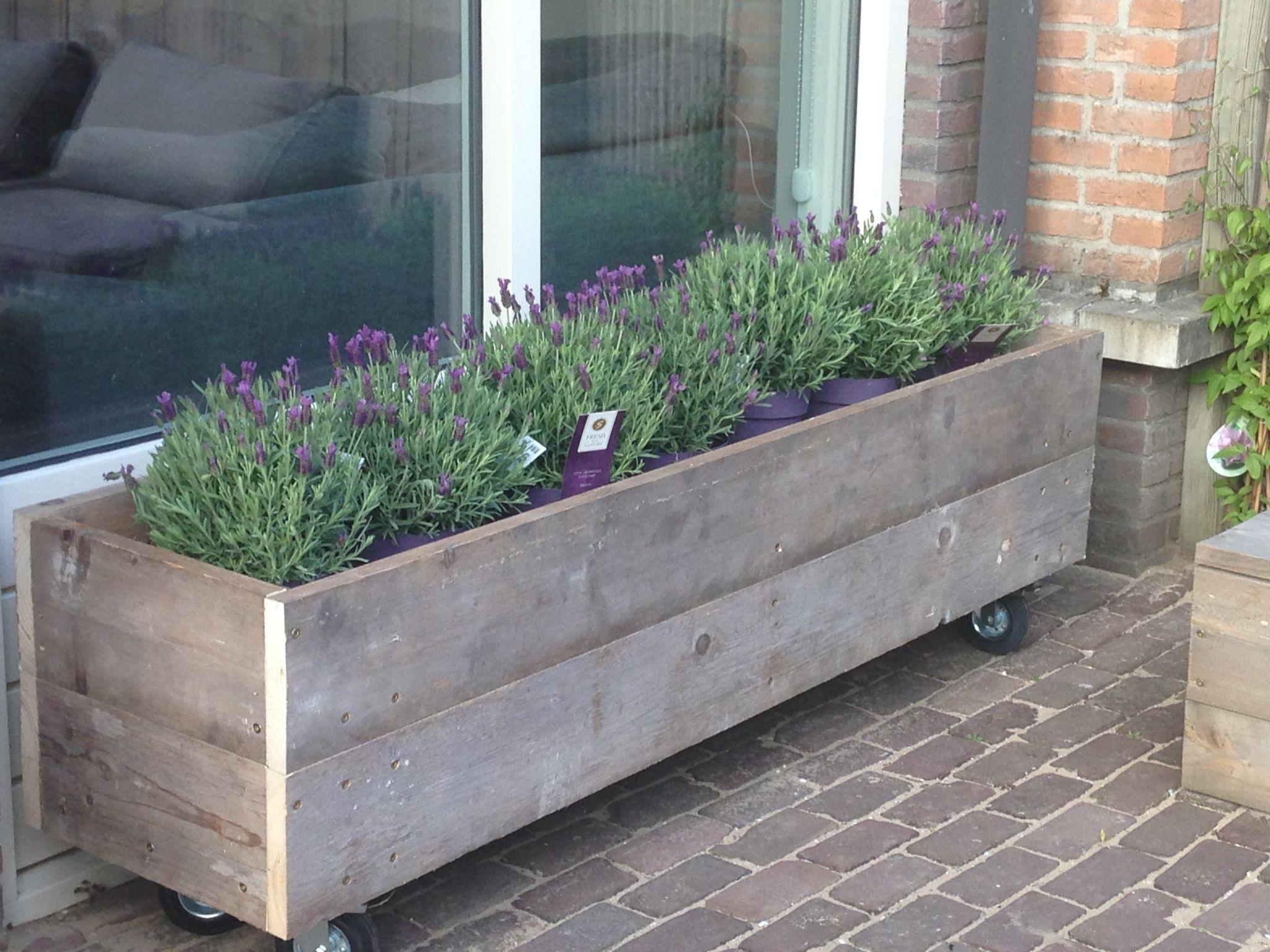 Plantenbak Steigerhout op wielen Balkon twerp Houten Plantenbakken Huis En Tuin Buitenleven