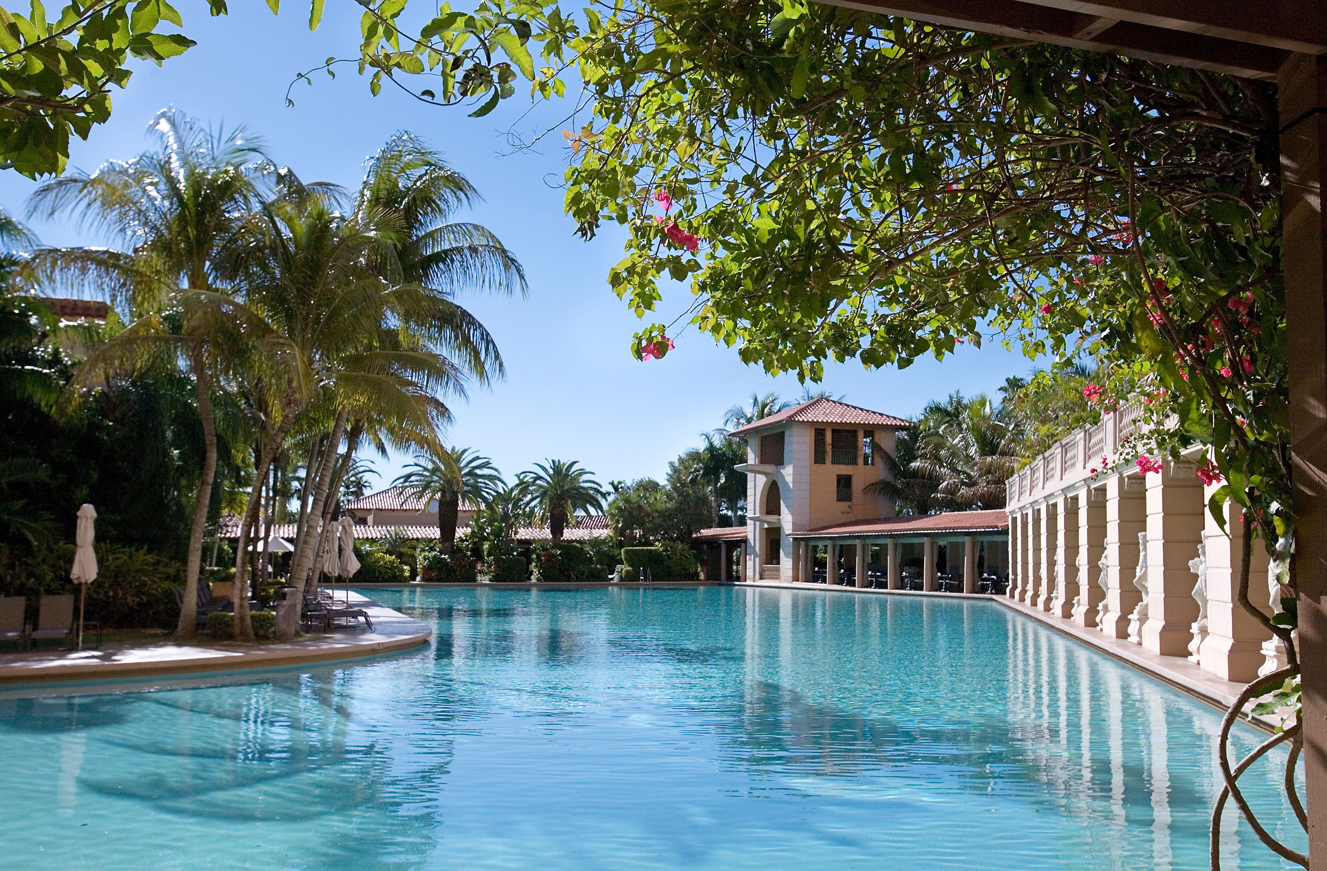biltmore hotel in coral gables - Google Search