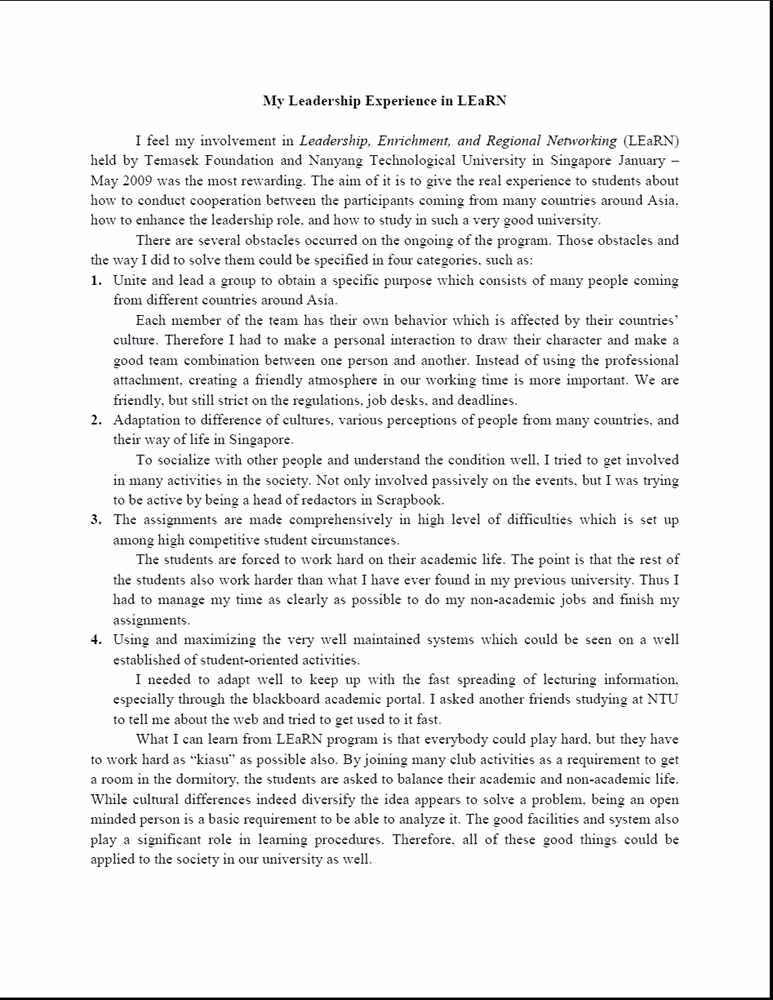 Leadership Essay Example New Short