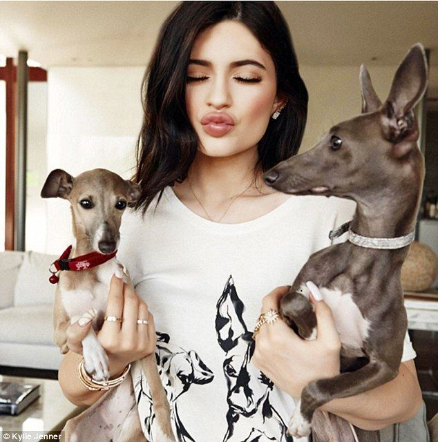 She's thankful! Kylie was grateful for her dogs, including her favourite Norman