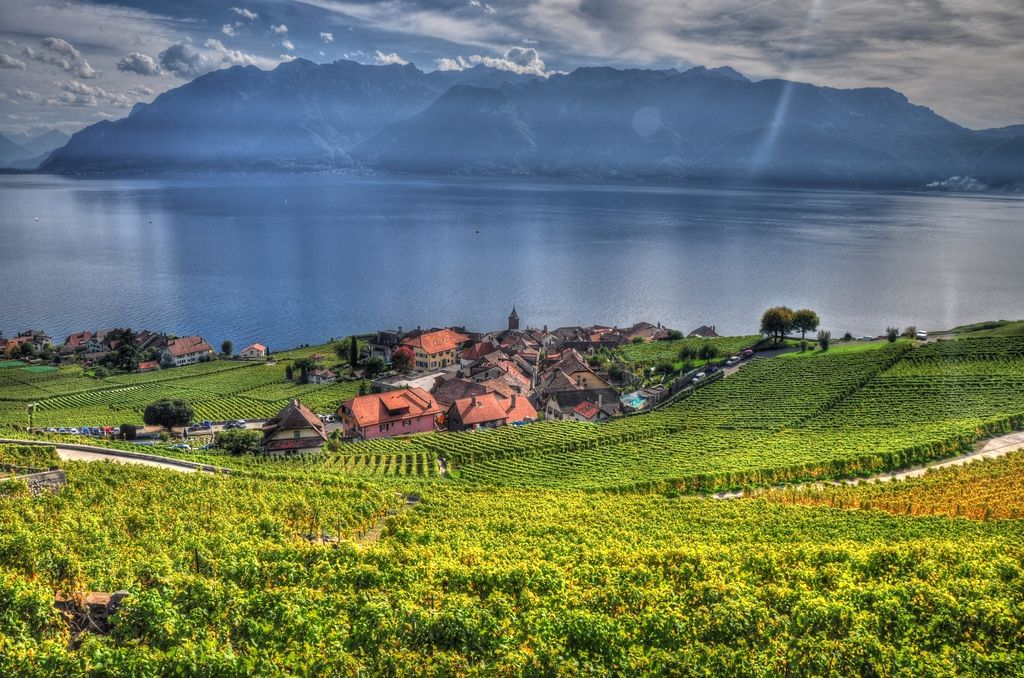 5 Best Things To Do In Vevey Switzerland Summer Holiday Scenery Gorgeous Scenery