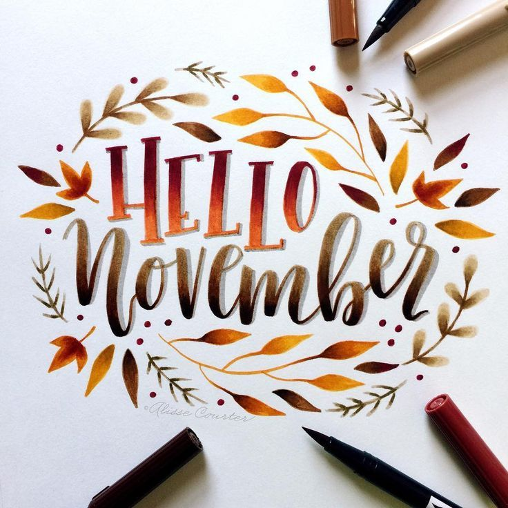 "Alisse Courter on Instagram: ""Hello November! I can't believe how quickly this year is going by"