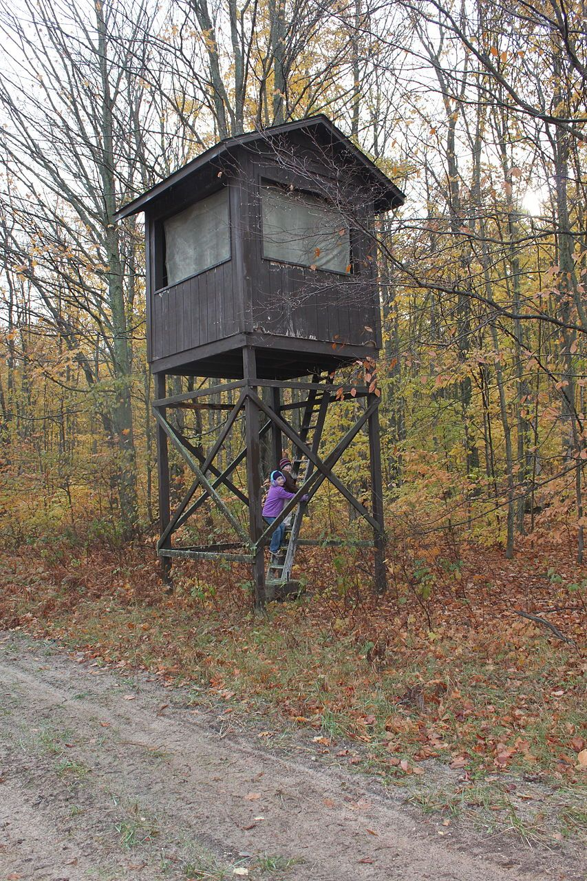 A large elevated hunting blind. Michigan, US Deer