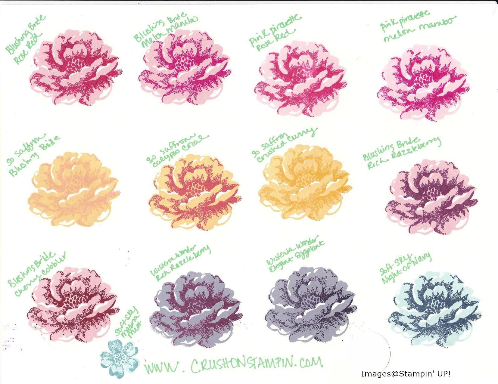Color Chart Roses Keninamas