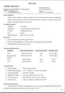 Skills Profile Resume Sample Template Example Ofbeautiful
