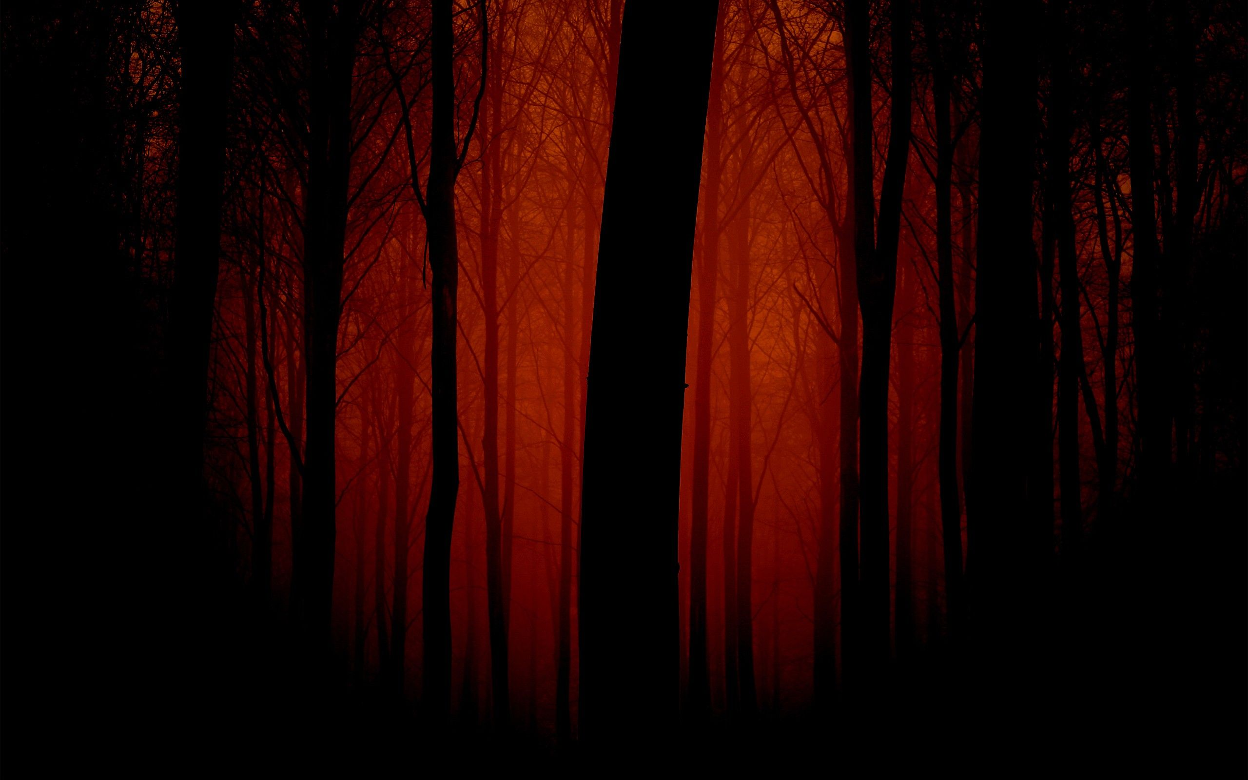 Dark Red Hd Wallpapers 2 Dark Red Hd Wallpapers