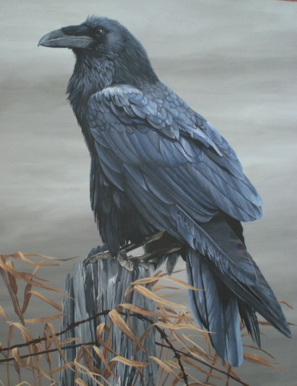 Raven Power Animal Totem Watcher Communicator Protector
