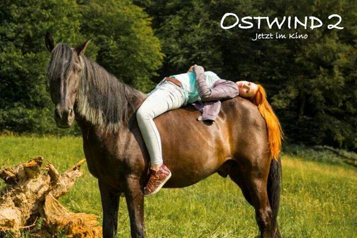 Ostwind 2 Ostwind Ostwind Film Und Pferde