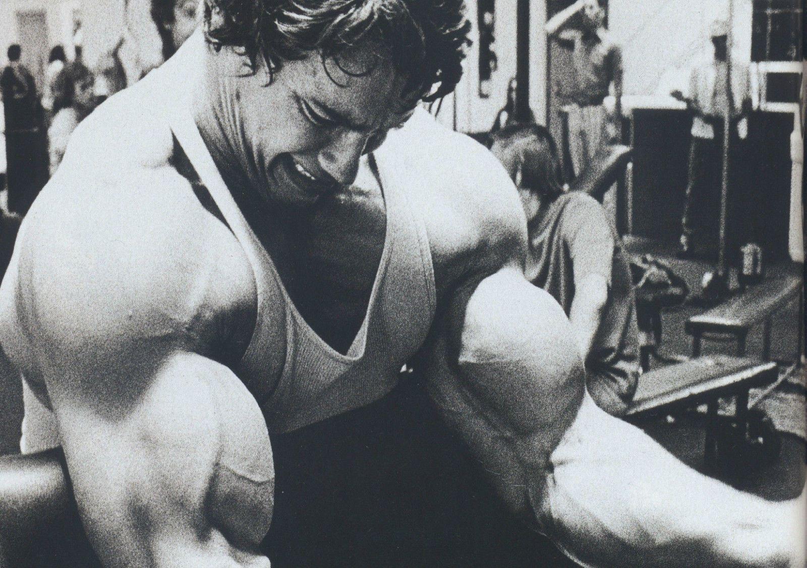 Arnold Schwarzenegger Bodybuilding Giant Poster Art Print A0 A1 A2 A3 A4 Sizes Bodybuilding Pictures Schwarzenegger Bodybuilding Arm Workout