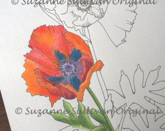 Poppy Flower Coloring Page Spring Flowers By Colormeartstudio