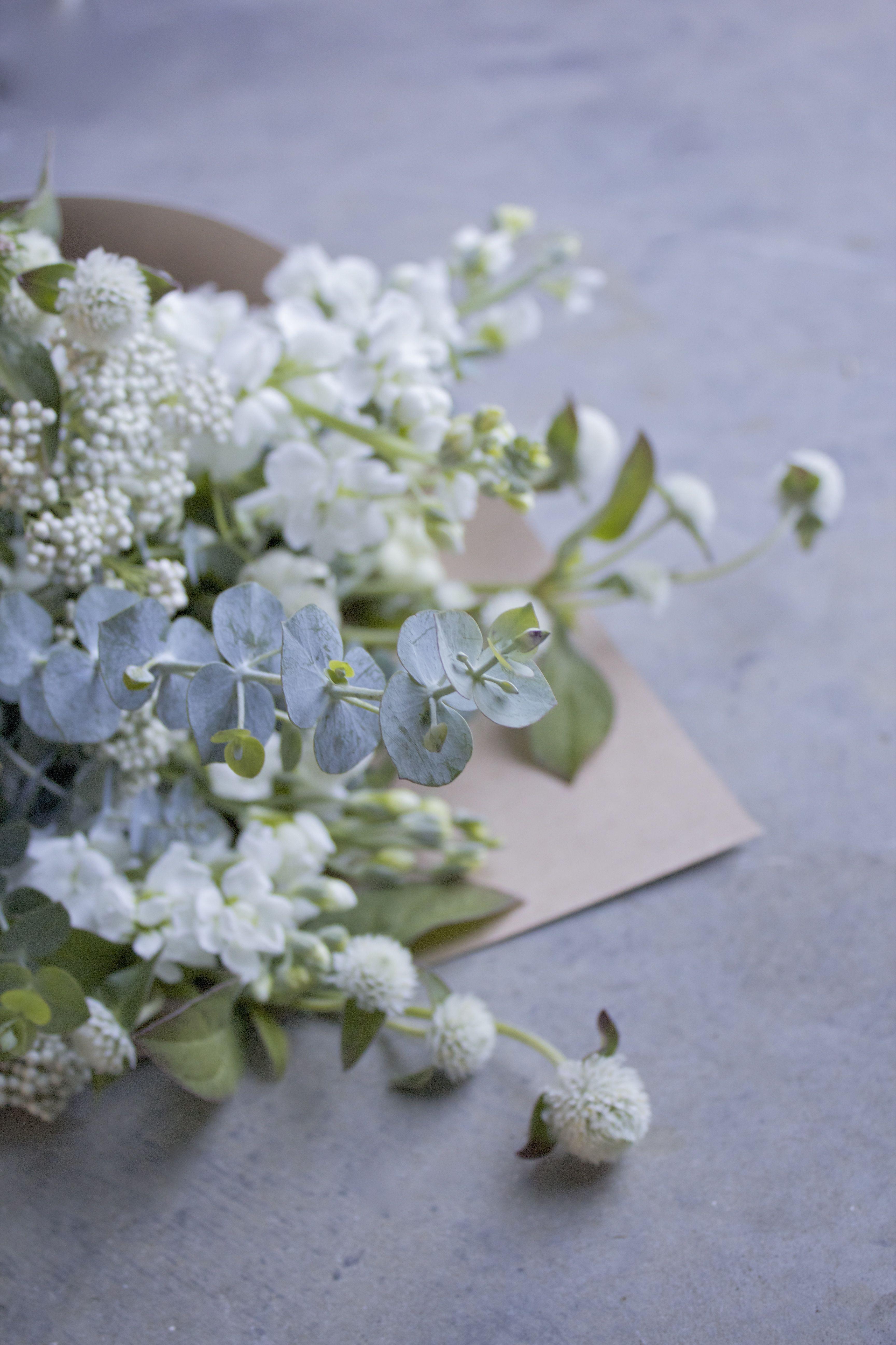 Blooms of the day bloom social flower farm flower