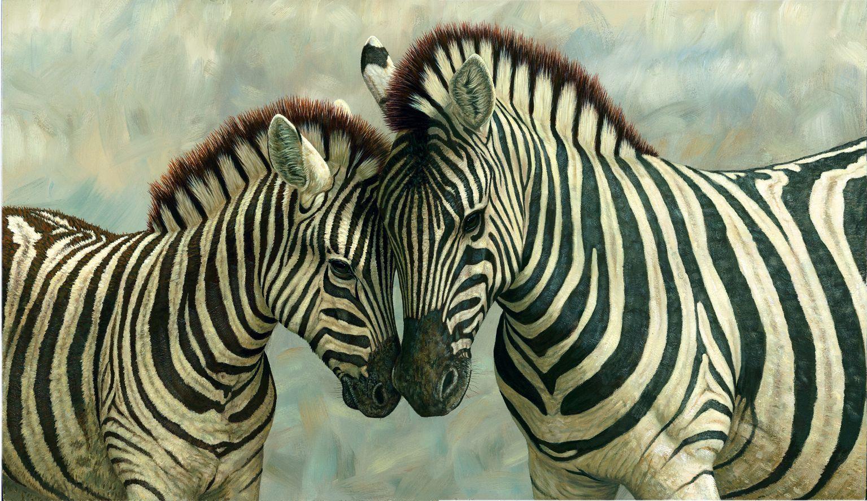 Zebra love . . . www.kerlagons.com | Animales Increíbles | Pinterest ...