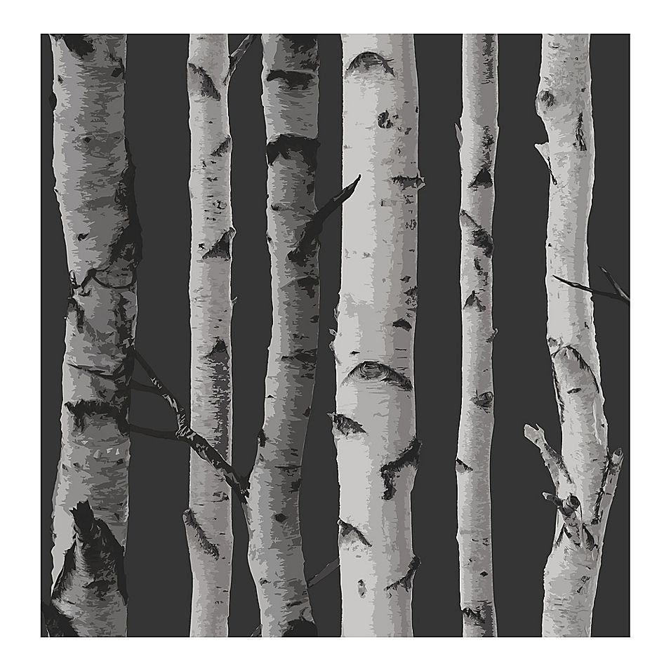 Fine Decor Distinctive Birch Tree Wallpaper In Black Birch Tree Wallpaper Tree Wallpaper Birches Wallpaper