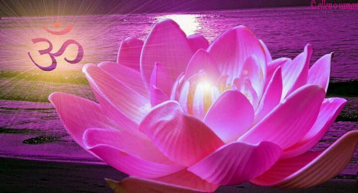 22+ Chakra meditation music the heart of reiki trends
