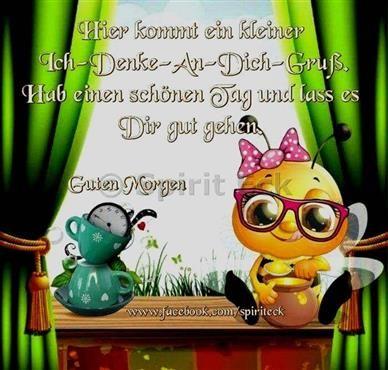 Funny sayings pictures good morning love - guten Morgen - Katzen / Cat