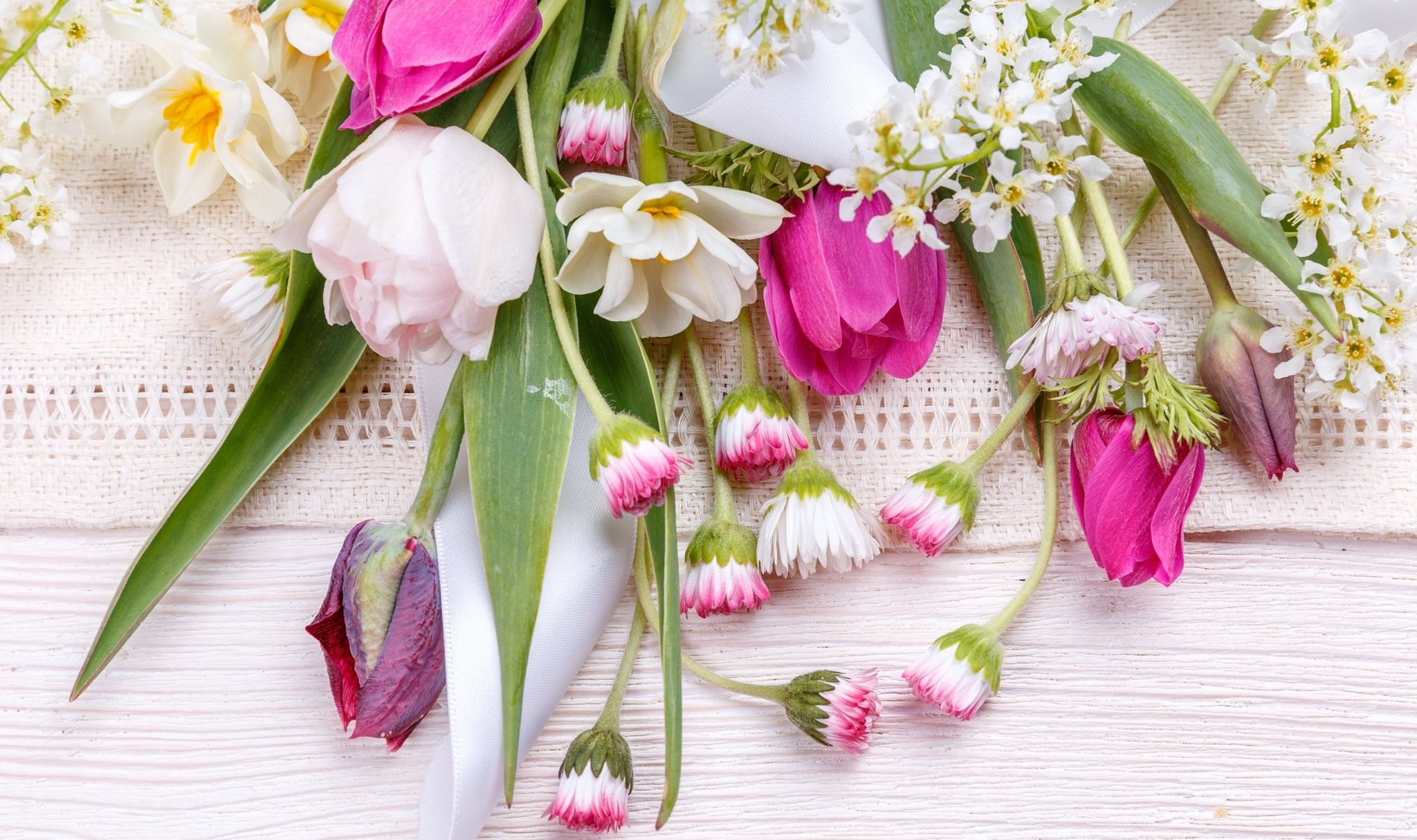 Kwiaty Tulipany Stokrotki Bukiet Spring Flowers Pink Flowers Flowers Photography