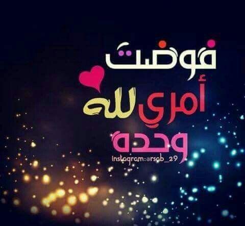 Desertrose فوضت امري لله Sweet Words Islamic Quotes Quotes