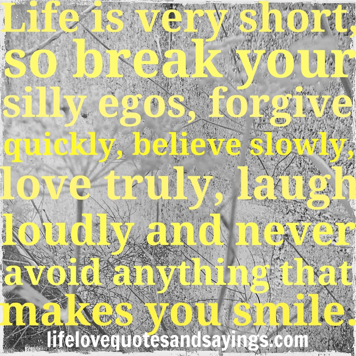 Very Short Quotes: Life Is Very Short, So Break Your Silly Egos, Forgive