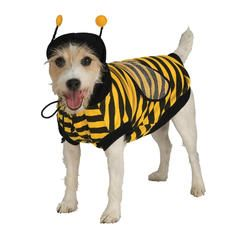 Pet Bumblebee Halloween Costume Kmart Pet Halloween Costumes