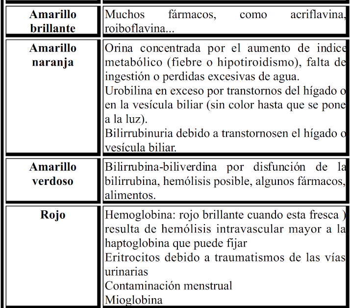 Laboratorio Clinico: Examen general de orina ( E.GO.) | Enfermería ...