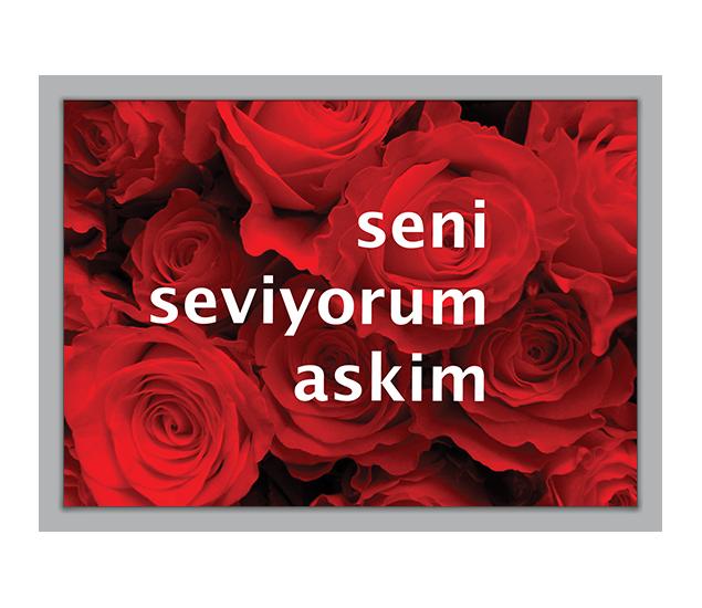 Ich will dich kennenlernen auf türkisch