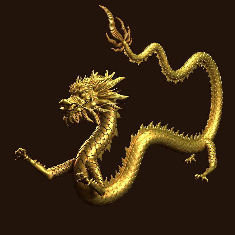 3d Dragon Chinese Dragon Art Japanese Dragon Dragon Artwork