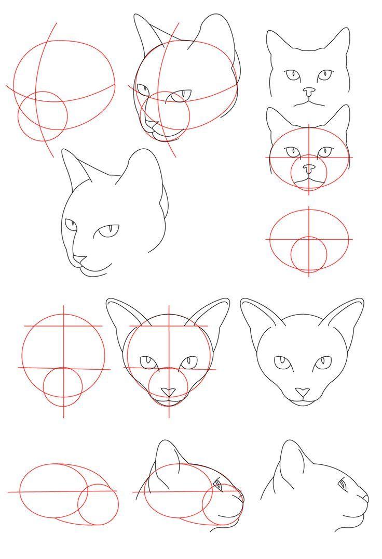 Cat Tutorial – Head by PerianArdocyl on DeviantArt