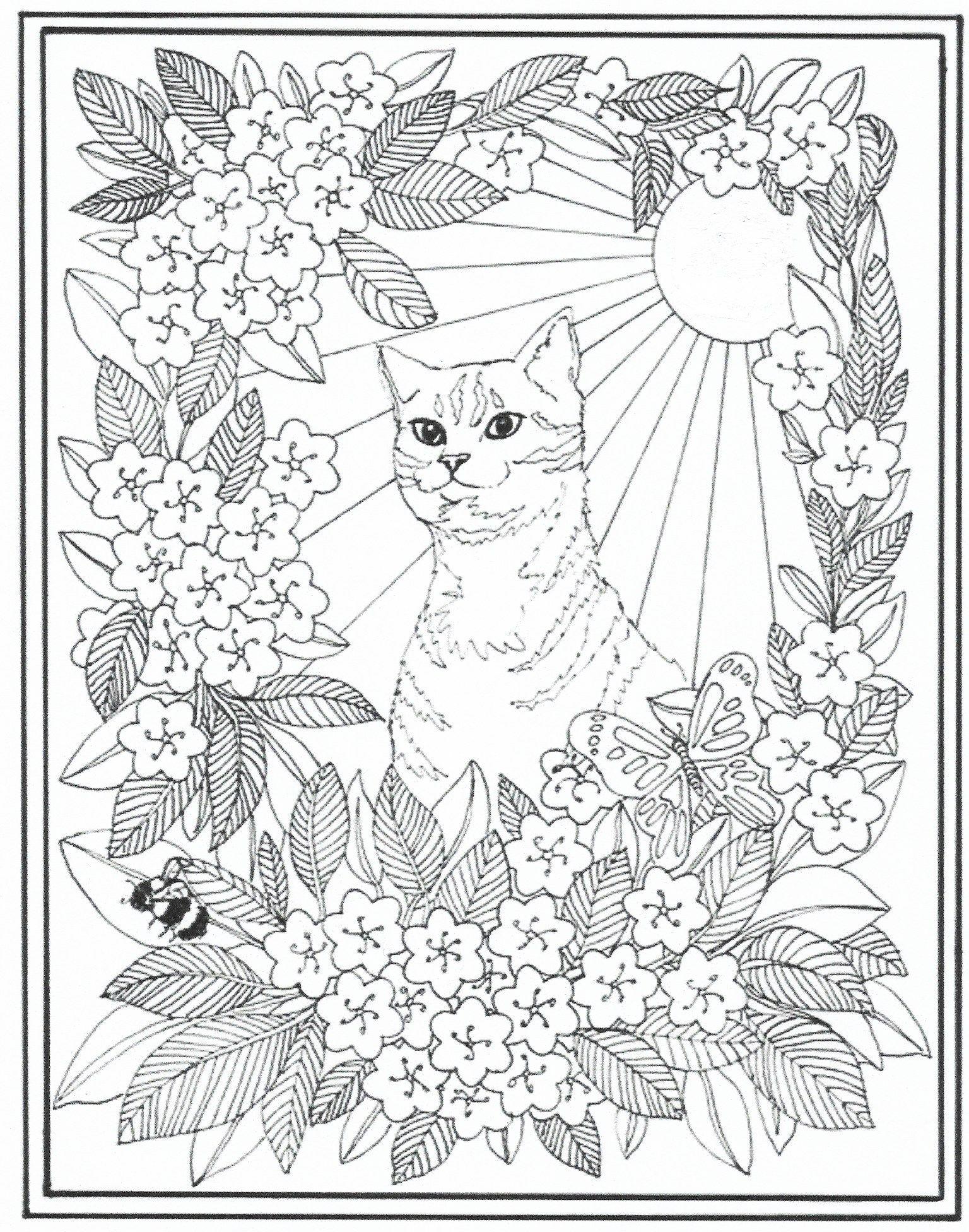 Pin de Beth Conroy en COLOR- CATS | Pinterest | Mandalas, Colorear y ...