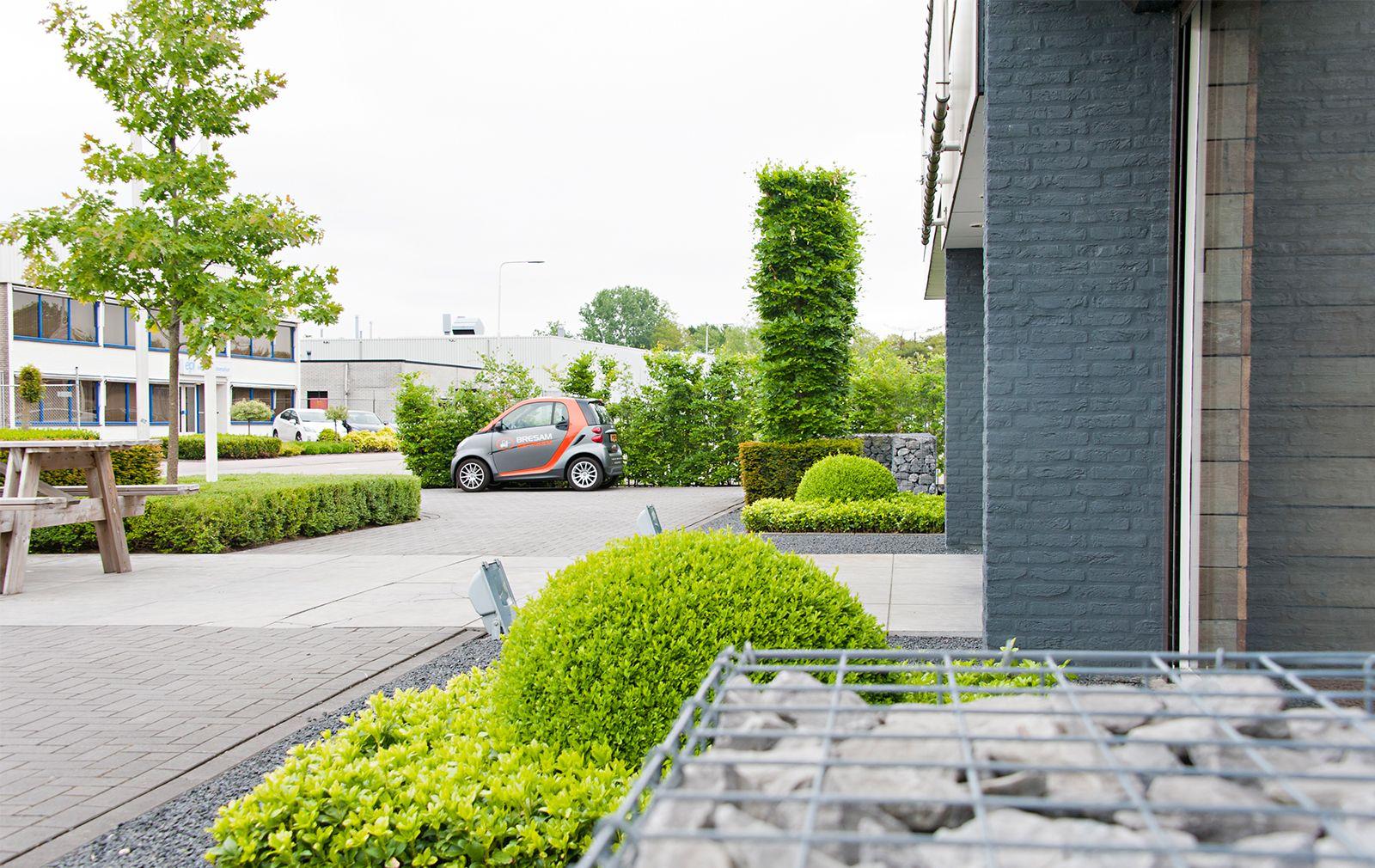 Bedrijfstuin In Etten Leur Jansen Hoveniers Tuinprojecten Groene Bloemen Groen