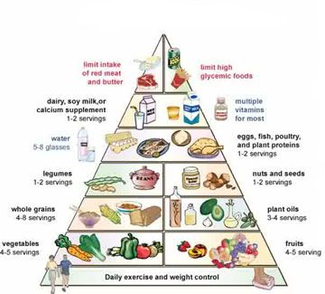 Diagram Food Guide Platinum Air Suspension Wiring Pyramid Better