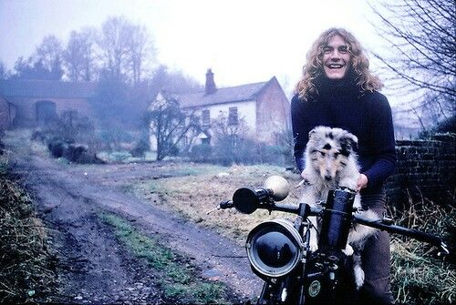 Robert Plant at home.