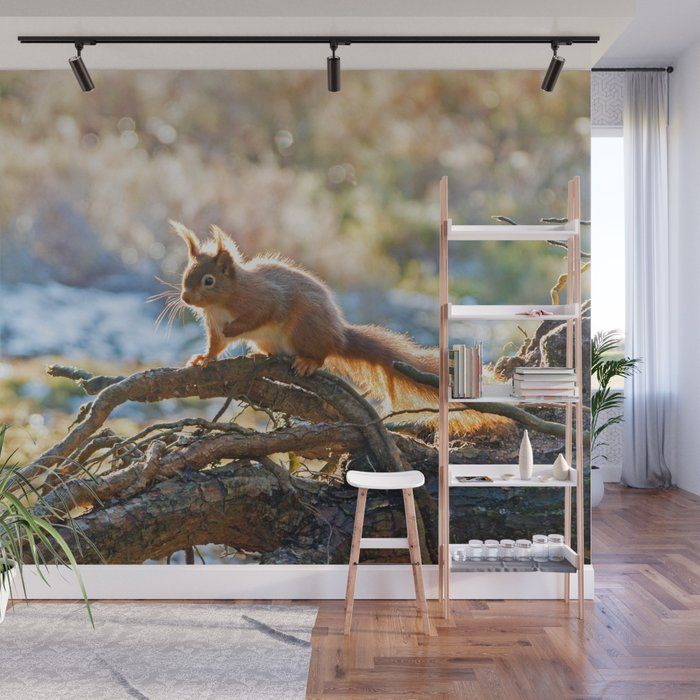 With Our Wall Murals You Can Cover An Entire Wall With A Rad Design Just Line Up The Panels And Stick Them On They Re Easy To Peel O With Images