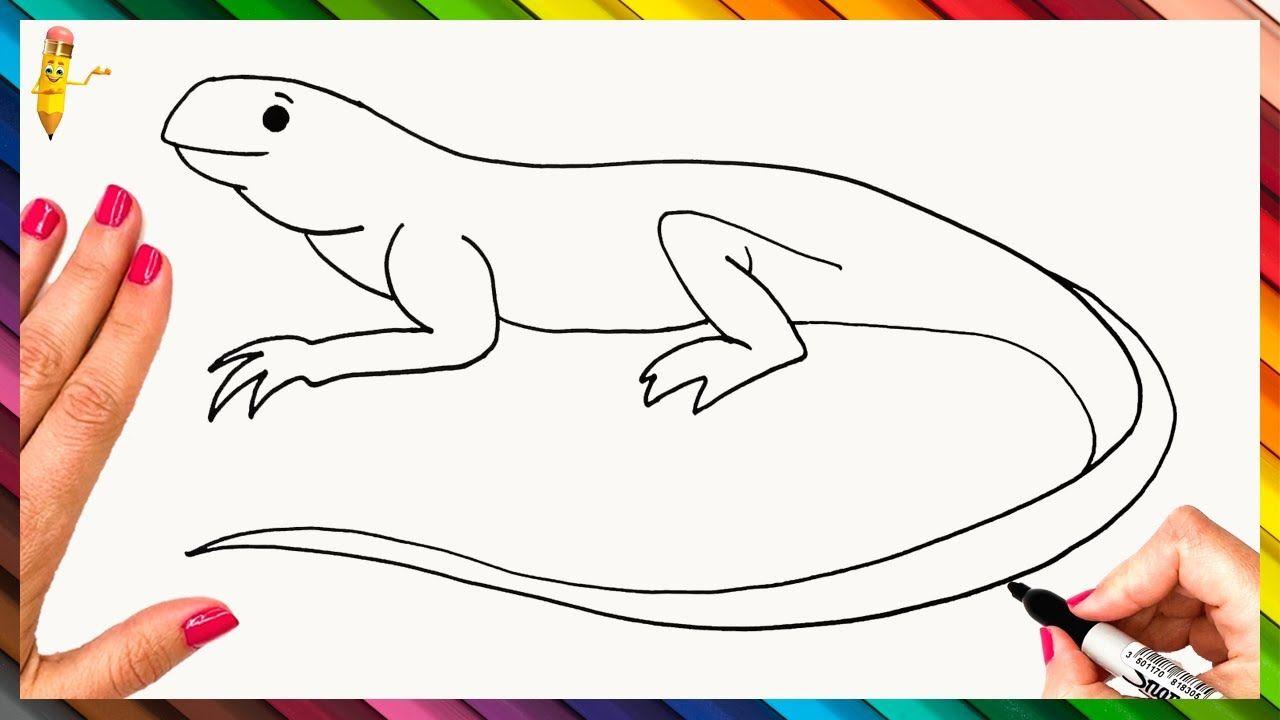How To Draw A Lizard Step By Step Lizard Drawing Easy Easy Drawings Drawings Drawing Tutorial