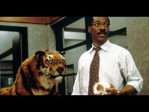 Dr Dolittle 2 2001 Movie Eddie Murphy Cedric The Entertainer Kristen Wilson Youtube Movies Dr Dolittle Cedric The Entertainer